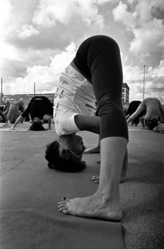 yogaday2015_iyengaryogstudiobari_02